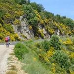 L'Ardèchoise, la fameuse course cycliste